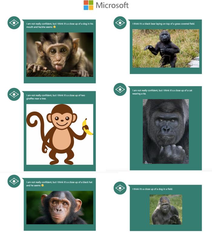 microsoft-monkey
